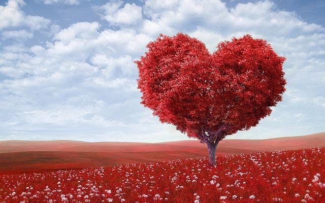 赤いハートの木
